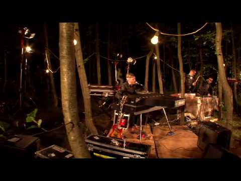 "Miike Snow - ""Animal (live, In The Woods)"""